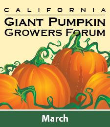 Pumpkin_Growers_Forum