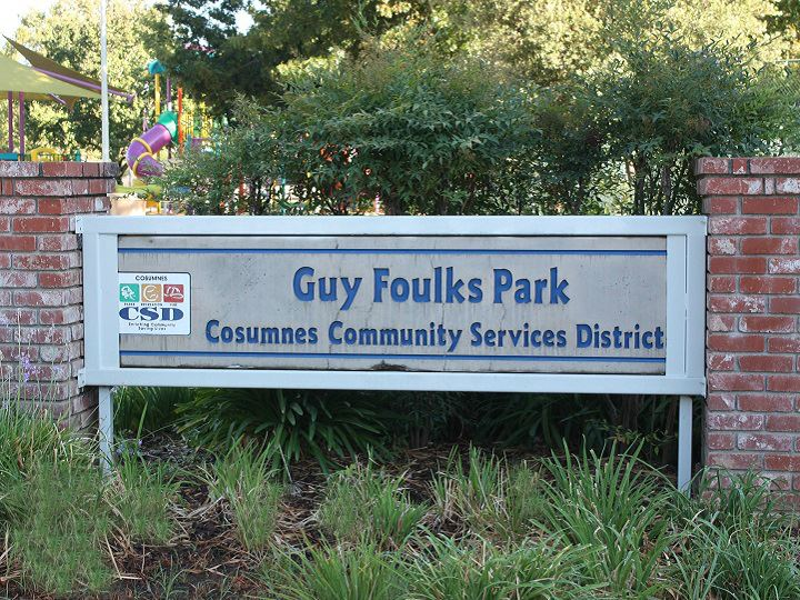 Foulks Park Sign with green lilies in the forground